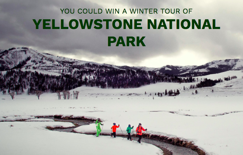Win A Trip For Two To Yellowstone National Park!