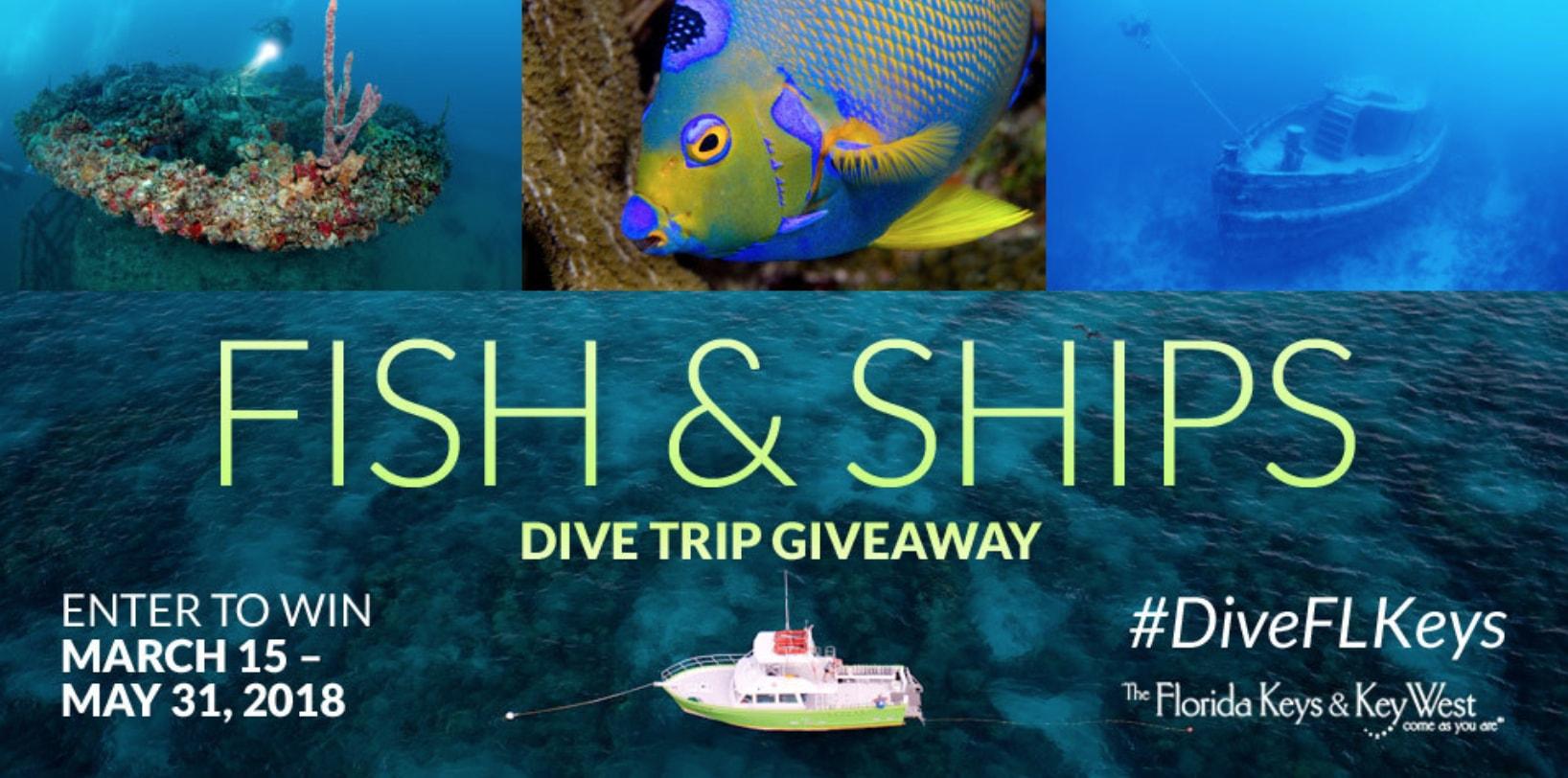 """Fish & Ships"" Dive Trip Giveaway"