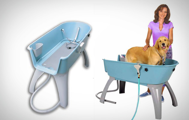Thepetguide Booster Bath Plastic Dog